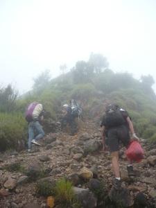 28. Meneruskan perjalanan ke pertigaan antara puncak syarif & pucak kenteng songo.
