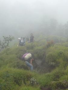 29. Meneruskan perjalanan ke pertigaan antara puncak syarif & pucak kenteng songo.